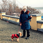 "Day 108: Dec 12th, 2014 – ""Out for a walk on the Danube bank"""