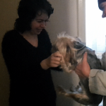 "Day 207: March 22nd, 2015 – ""Reunion with the little Yorkie"""