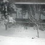 """Day 124: Dec 29th, 2014 – """"Winter has come"""""""